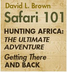 Safari 101
