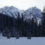 The frozen Rocky Mountains as seen from the gondola ride in Banff, Alberta.