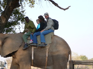 The whole Veldsman family mounted upon their trusty steed...err.. pachyderm.