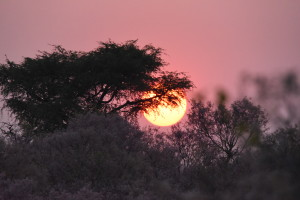 A beautiful sunset in search of a sundowner.